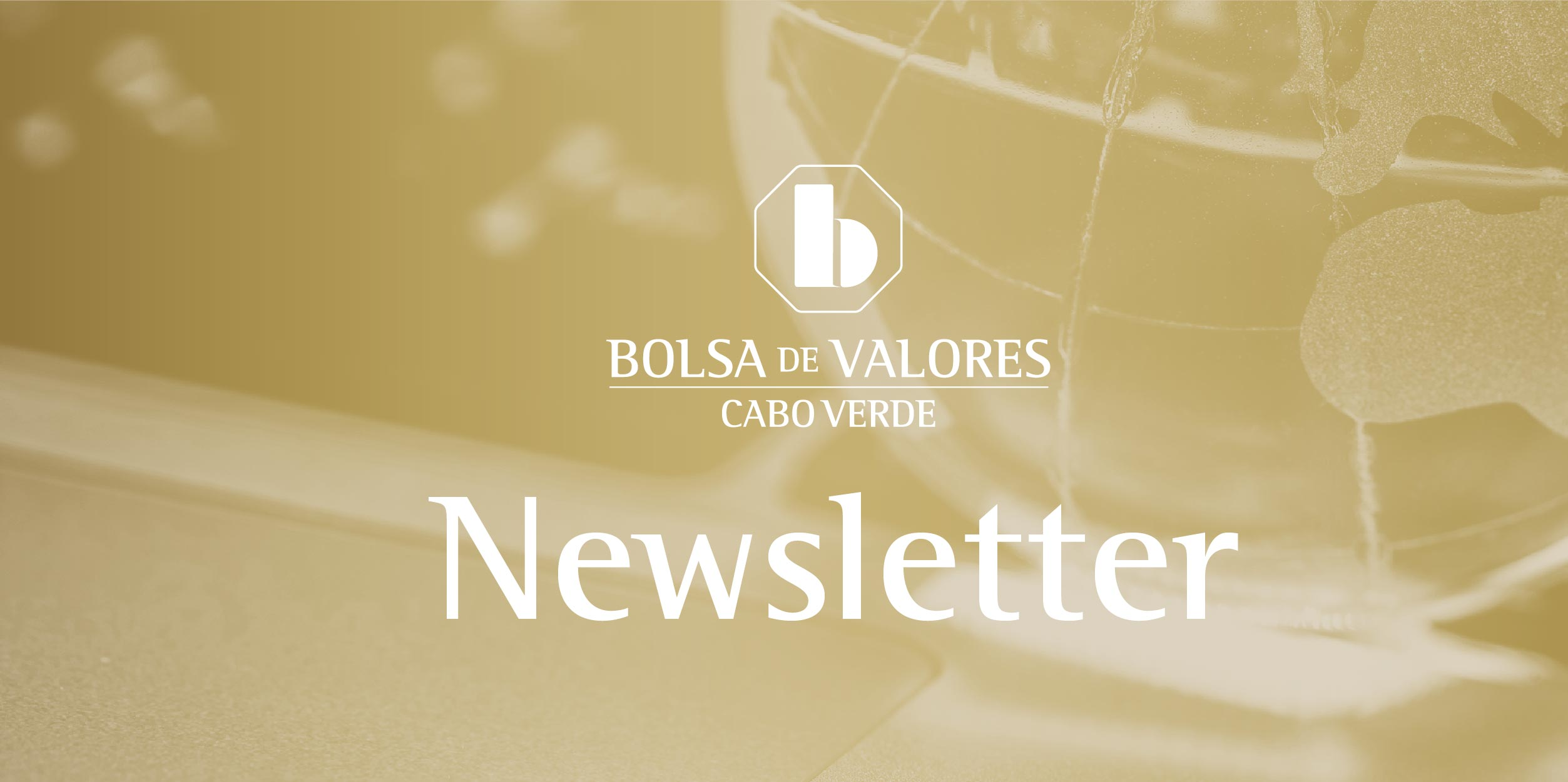 NEWSLETTER - Operações do Mercado de Bolsa referente ao ano 2019